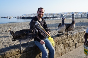 Seth making some Pelican friend in Paracas