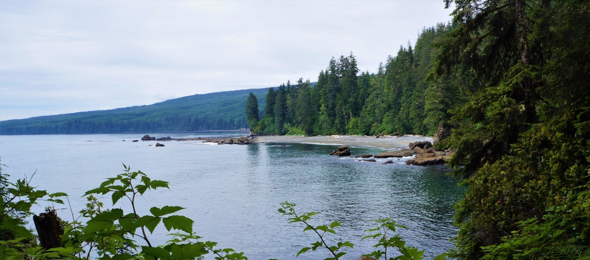 Hiking the Juan de Fuca Trail - Part II